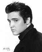 Elvis! The King