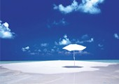 Umbrella on Sandbar Paradise Island