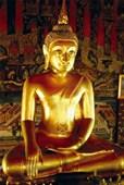 Golden Buddha Statue Buddha