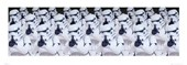 Cloned Storm Troopers Star Wars