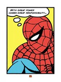 Great Power, Great Responsibility Spiderman