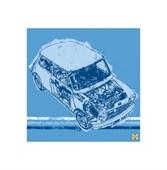 Austin Rover Mini Haynes Classic Collection