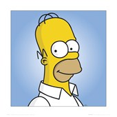 The man, The legend... Homer Simpson