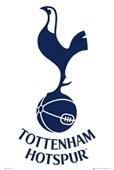 Spurs Team Logo Tottenham Hotspur