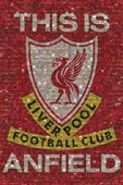 This Is Anfield Liverpool FC Photomosaic