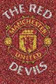 The Red Devils Mosaic Manchester Utd