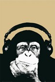 Monkey with Headphones Steez