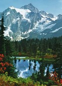 Mountain Park 4 Sheet Wall Mural