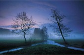 Misty Landscape In Dreams