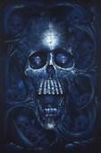 Vanitas Haunting Skull