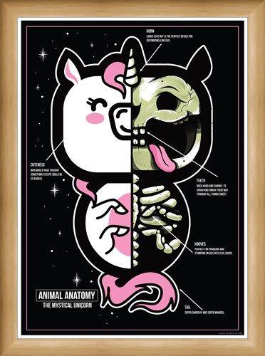 Framed Framed The Mystical Unicorn - Animal Anatomy