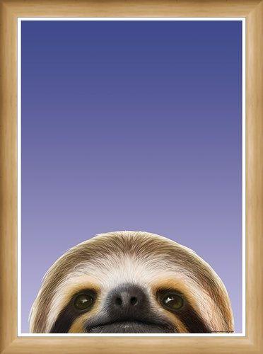 Framed Framed Sloth - Inquisitive Creatures