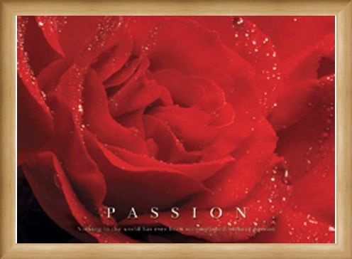 Framed Framed Rose Bloom - Passion, Inspirational