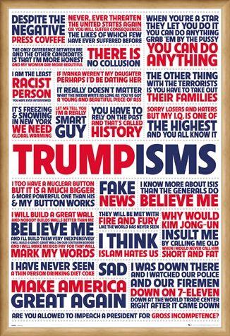 Framed Framed Trumpisms - President Trump