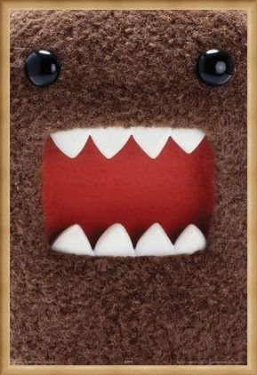 Framed Framed Extreme Close Up - Domo