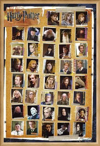 Framed Framed Character Montage - Harry Potter