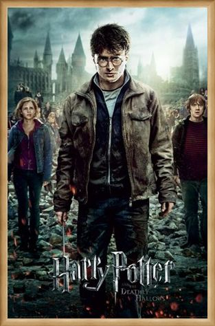 Framed Framed The End is Coming! - Harry Potter and the Deathly Hallows