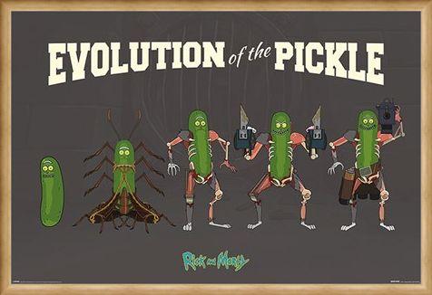 Framed Framed Evolution Of The Pickle - Rick and Morty