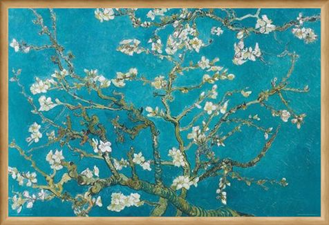 Framed Framed Almond Blossom (1890) - Vincent Van Gogh