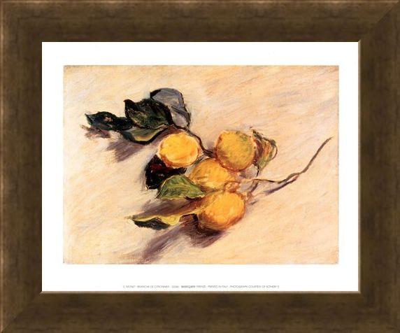 Framed Framed Branche de Citronnier - Claude Monet