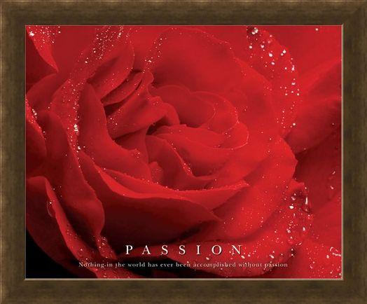 Framed Framed Rose Bloom - Passion, Inspirational