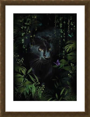 Framed Framed Panther - Summer Thornton