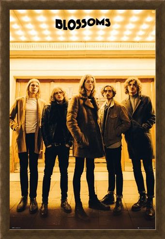 Framed Framed Band Line-up - The Blossoms