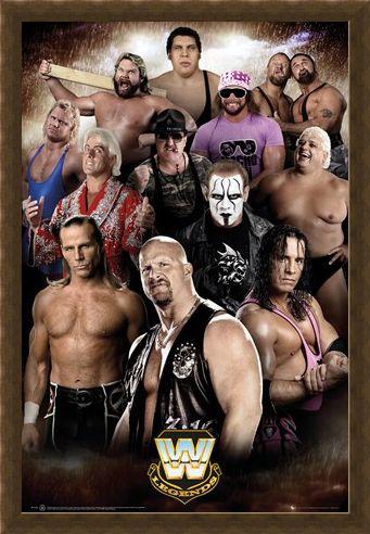 Framed Framed Wrestling Legends - WWE