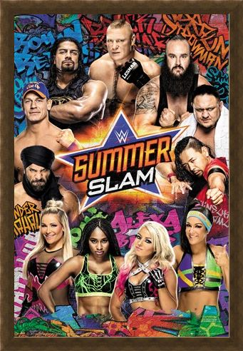 Framed Framed Summerslam - WWE