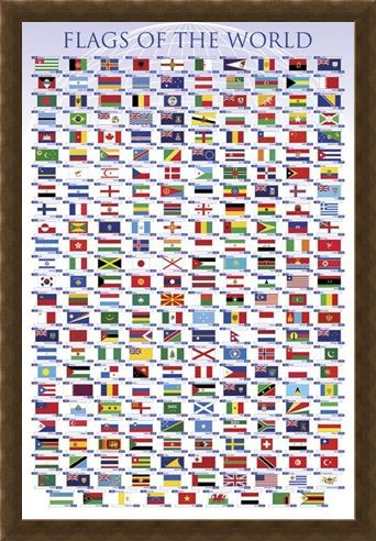 Framed Framed Flags of the World - Educational Chart