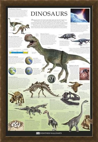 Framed Framed Dinosaurs - Dorling Kindersley