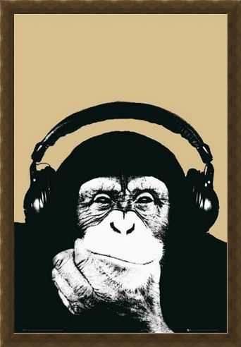 Framed Framed Monkey with Headphones - Steez