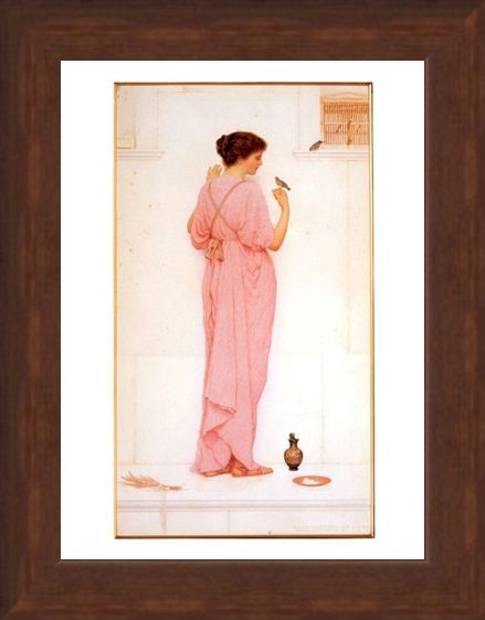 Framed Framed Song Birds - George Lawrence Bulleid