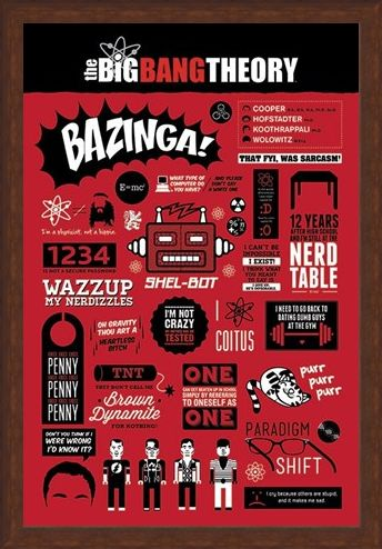 Framed Framed The Big Bang Theory Infographic - The Big Bang Theory