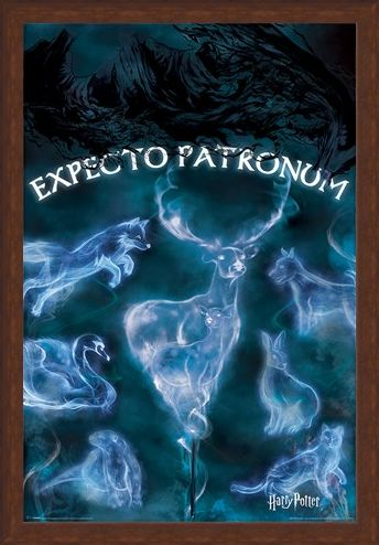Framed Framed Expecto Patronum - Harry Potter