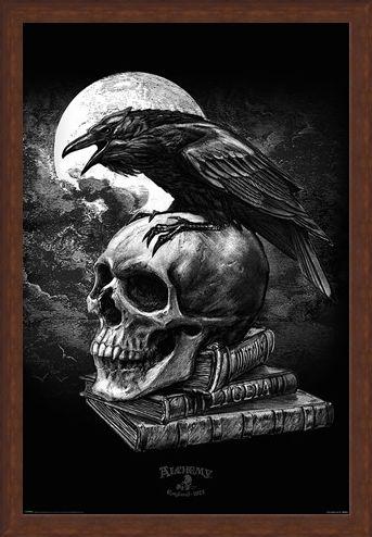 Framed Framed Poe's Raven - Alchemy