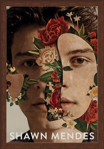 Framed Framed Flowers - Shawn Mendes