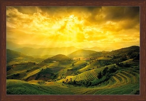 Framed Framed Rice Fields Of Yên Bái - Mountain Masterpiece