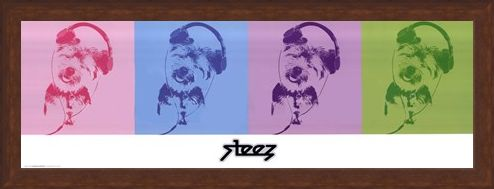 Framed Framed DJ Doggie Quad - Steez