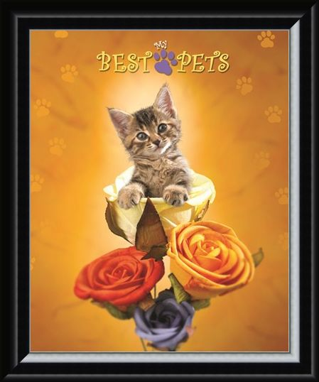 Framed Framed Cat amongst the Roses - My Best Pets
