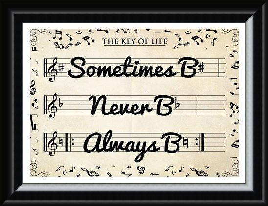 Framed Framed The Key of Life - Musical Motivation