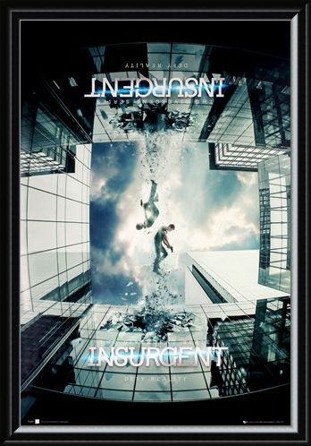 Framed Framed The Divergent Series - Insurgent