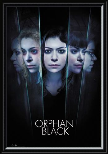 Framed Framed Faces - Orphan Black