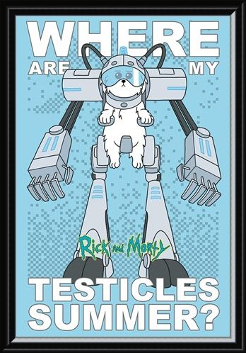 Framed Framed Where Are My Testicles - Rick and Morty