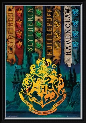 Framed Framed House Flags - Harry Potter