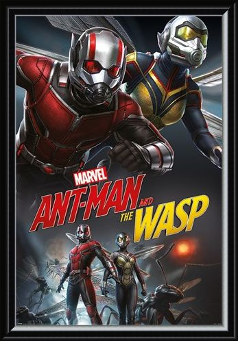 Framed Framed Ant-Man and The Wasp Dynamic - Marvel