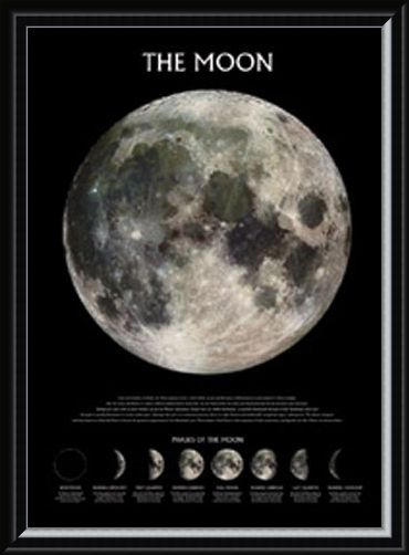 Framed Framed Phases of the Moon - The Moon