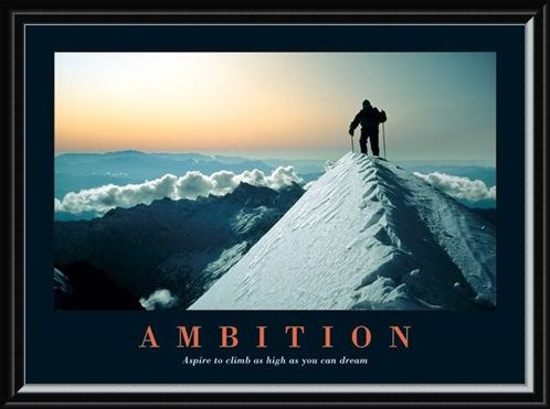 Framed Framed Aspire To Climb As High As You Dream - Ambition