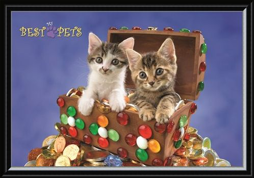 Framed Framed Kitten Treasure - My Best Pets