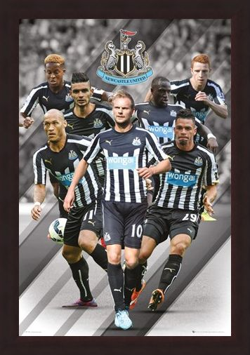Framed Framed Star Players - Newcastle United Football Club 2014/15